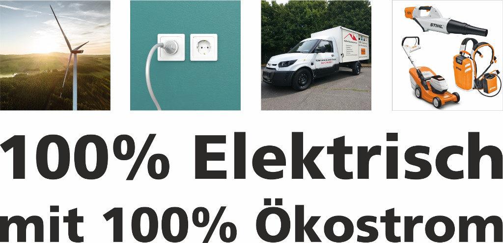 100%-elektrisch-mit-oekostrom